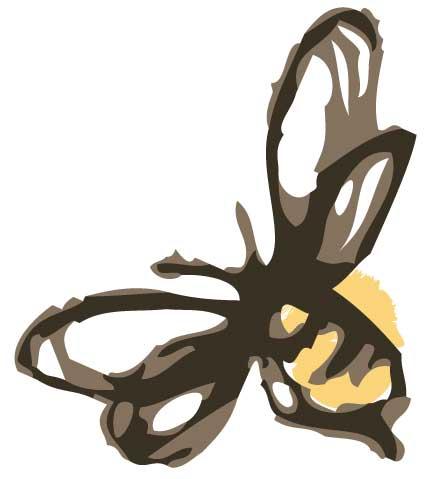 single-bee