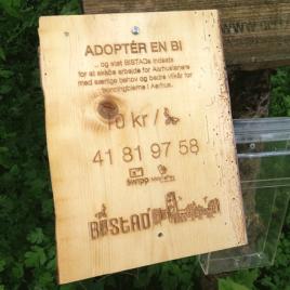 Adopter en bi